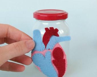 Heart Specimen Jar