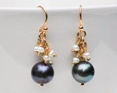 Black & White PEARL Earrings 14K Gold Filled Peacock PEARL Earrings Freshwater Pearls Bridal Classic Elegant Tahitian Black Pearl