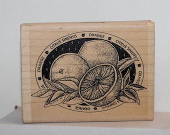Orange Citrus Sinensis Label fruit Rubber Stamp