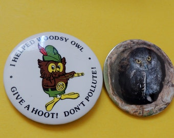 Woodsy Owl Don't Pollute and Owl Pin