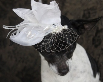 Black  color   mini  hat with   feather    and   flower  for dog or cat