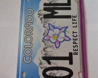 License Plate Clipboards - Free Shipping