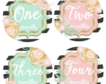 FREE GIFT, Baby Girl Monthly Stickers, Baby Girl Month Stickers, Watercolor Flowers, Milestone Stickers, Pink, Mint, Gold Nursery Decor