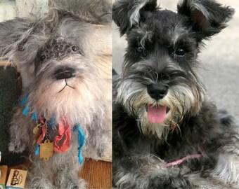 Custom Keepsake, Schnauzer, dog ~ Brady Bears Studio ~ mohair, teddy, bear, artist, ooak ~ faap, hafair