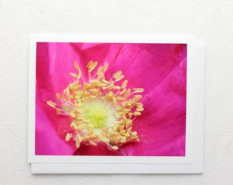 Bright Pink Rose Flower Note Card, macro floral photo stationery, botanical photography, cheerful greeting card, a2 blank notecard