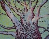 Sycamore- 16 x 20 inches- acrylic painting