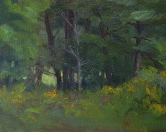 Looking Thru, original plein air oil painting, 8x10 from North Georgia