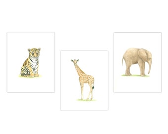 Baby Animal Print SET of 3  ZOO Animal Prints  Nursery Art Safari nursery art baby nursery art Animl theme nursery Tiger Elephant Giraffe