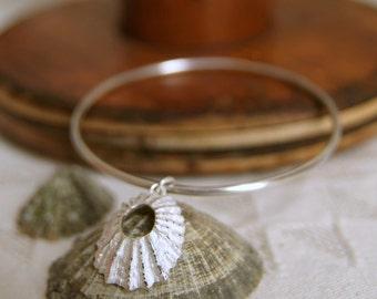 Silver Shell Bracelet, Nautical Jewellery, Beach Bracelet, Surfer Jewelry, Seashell, Limpet Shell, Surf Girl, Bangle bracelet,   Charm