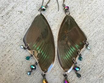 Real Butterfly Wing Earrings, Crystal Earrings, Peacock Metallic, Bohemian Earrings, Boho Gypsy, Hippie Jewelry, Unique Original BW102