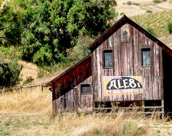 Kentucky, Trapp, Barn with Ale 8 One Sign Fine Art Print on Paper or Canvas