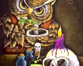 Dr Hoots Apothecary