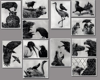 Aesops Fables, Raven, Crow, Etchings. 5 inch by 7 inch -12 print series,  save 120.00 dollars