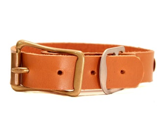 Leather Dog Collar With Name Plate Etsy