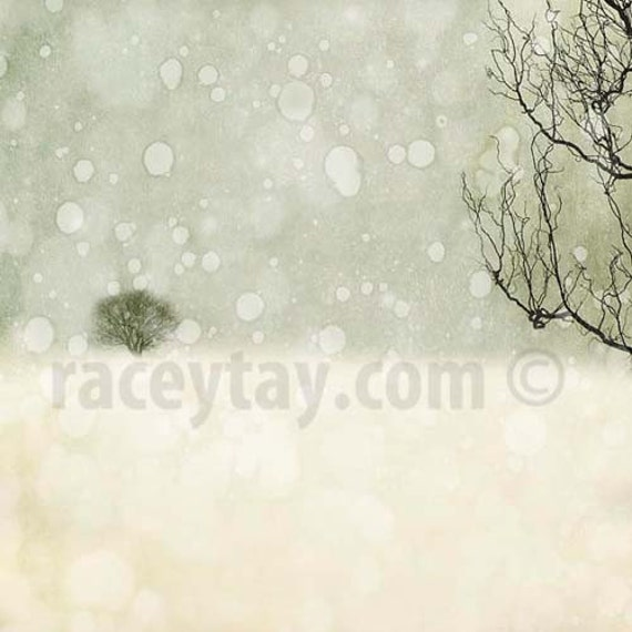Winter Print, White, Gray, Neutral, Rustic, Nature Photography, Snow, Fine Art Print, Large Wall Art