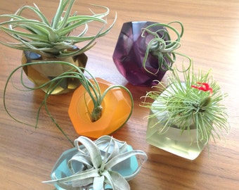 Tillandsia gems, unique translucent resin air plant holder, geometric air planter, crystal plant holder, great gift