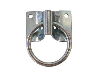 Ceiling Ring Hook for Plug or Swag Pendants