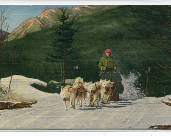 Husky Dog Sled Team North Woodstock New Hampshire linen postcard