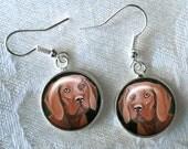 Hungarian Viszla Drop Earrings ~ February Birthday ~ Viszla Owner ~ Cute Earrings ~ Hunting Dog ~ Viszla Owner