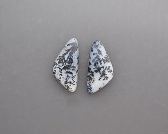 Feather Agate Pair