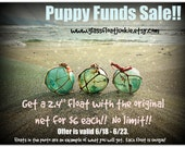 Japanese Glass Fishing Floats - Puppy Funds Sale