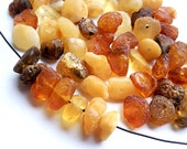 50pcs - Natural Baltic amber beads, raw small nugget beads, color mix  6-8 mm at widest part (#56)