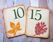 Autumn Wedding Table Numbers Rustic Country Fall Leaves