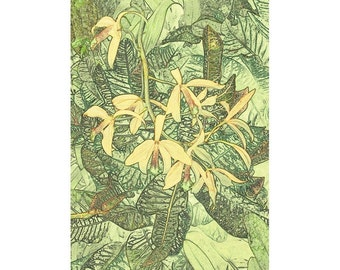 Arts & Crafts Style Floral Art Print of Orchids and Hostas in a Garden