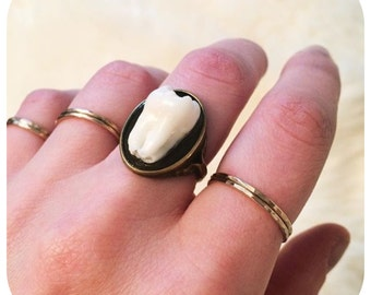 YOUR SUPPLIED TOOTH - Real Human Molar Antique Brass Size 6 Ring