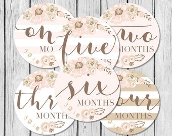 Baby Girl Month Stickers, Monthly Baby Stickers, Onesie Stickers, Monthly Onesie Stickers, New Baby Stickers, Milestone Stickers, New Mom