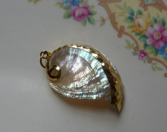 SALE!!!! Pendant-Stunning Natural Abalone Shell with Gold Gilded Edging