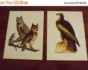 Bird Prints, 2 Large Audubon Bird Wall Hanging Book Prints, Antique Original Great Horned Owl & Bald Eagle