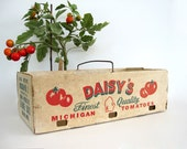 Vintage Cardboard Tomato Carrier Box Basket Produce Vegetable Storage Container Wire Handle Tote Daisy's Michigan Market Farmhouse Decor