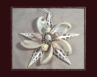 "Sea Shell Keepsake Ornament Accent #142 (Size 6.25""), Beach/Nautical/Coastal Decor, Keepsake Ornament/Wall Accent"