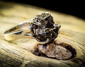 Meteorite, Meteorite Ring, Silver Meteorite, Asteroid Ring, Meteorite Jewelry, Meteorite Rings, Silver Meteorite, Unique, Silver Rings
