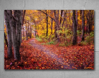 Autumn Landscape 45x30 inches Extra Large Wall Art, Vivid Metal Print, Fall Photography, Home or Office large wall decor, Ready to Hang