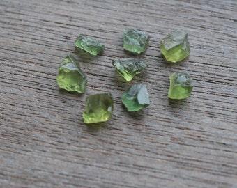 Green Tourmaline Crystals Set of 8  #5245
