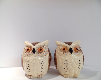 Vintage Enesco Owl Salt and Pepper Shaker Set - Enesco Owl Shakers - Owl Salt and Pepper Shakers - Enesco Shakers - Vintage Owl Shakers