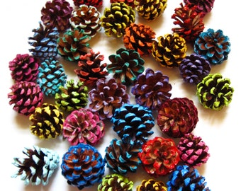 50 Hand Picked Small Painted Pine Cones for Crafting