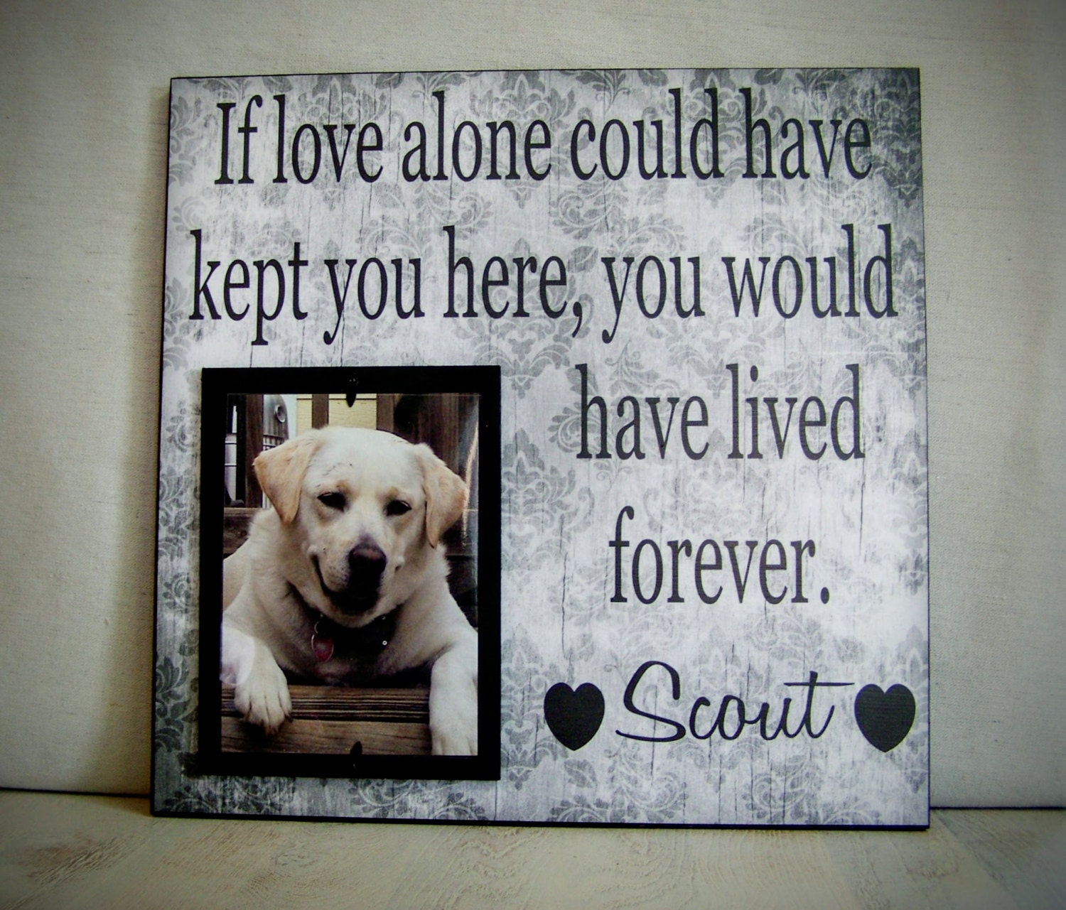 dog memorial frame cat memorial zoom