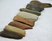"8 colorful fossil bone relics (2"" - 2.25"") of the Miocene epoch (no.v10)"