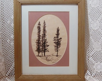 Spruce Tree Ink Drawing Sketched Signed