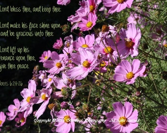 Blessing-Cosmos with Bible Verse