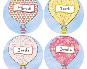 Hot Air Balloon Baby Stickers, Monthly Baby Sticker, 1-12 Months, Baby Growth Sticker, New Baby Sticker, Baby Photo Prop (527)