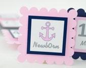 Anchor 12 Month Photo Banner, First Year Photo Banner, First Year Banner, Navy Blue, Gray and Light Pink, Anchor Theme, c-1230
