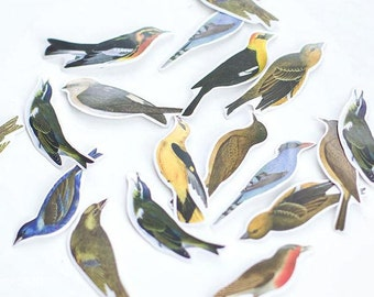 Paper Deco Label Seal Set - Birds - 45 Pcs