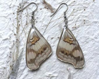 Aretes con Alas de Mariposa encapsulados en Resina y gancho de acero inoxidable.  Antialérgicos