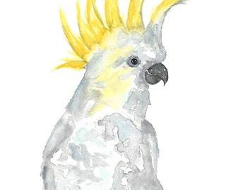 watercolor parrot art, parrot print, tropical print, cockatoo art, cockatoo print, tropical art, bird print, parrot painting,
