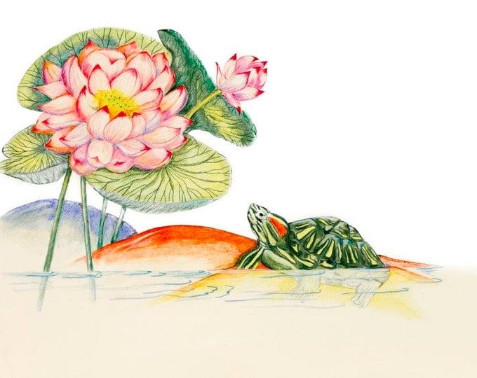 LIMITED EDITION Lotus with Tortoise print, Vesak Enlightenment Print, Buddha Buddhism, Lotus Pond Meditation, Art Print of Pencil Drawing