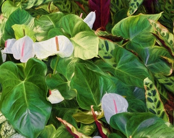 Tropical Art, Tropical Leaves Flowers, Anthurium, Hawaiian plants, White Flowers Green Leaves, Tropical Decor, Ready to Hang Canvas